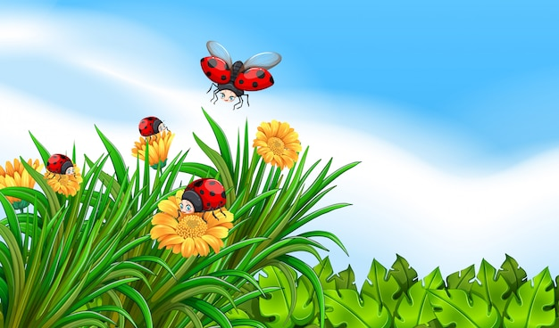 Escena con mariquitas volando en el jardín.