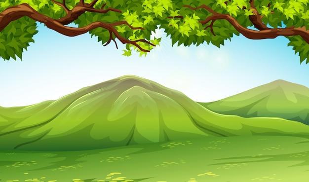 Escena con montañas y árboles.