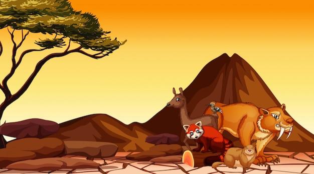Escena con muchos animales en el campo de sabana