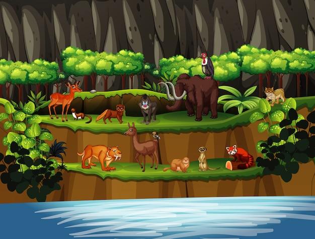 Escena con muchos animales junto al río.