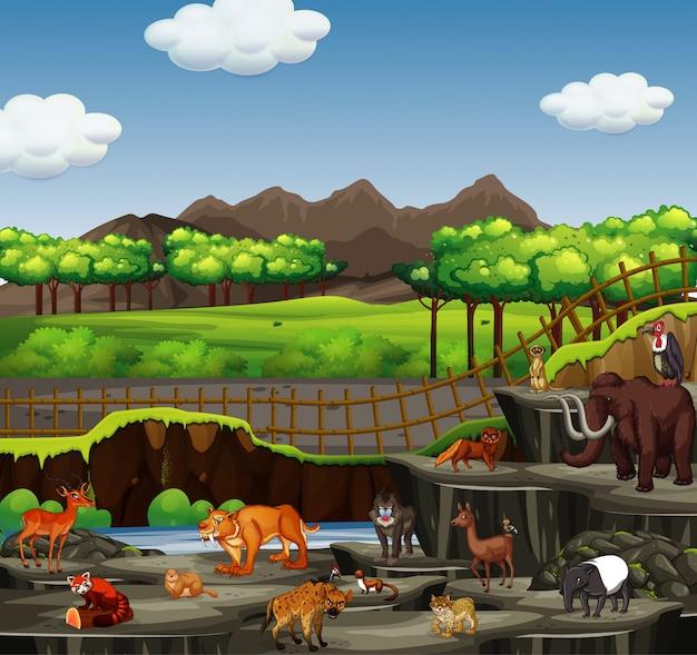 Escena con muchos animales en zoológico abierto
