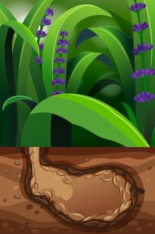 Escena de la naturaleza con agujero subterráneo