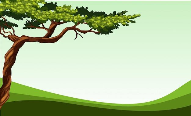 Escena de la naturaleza con árbol y campo