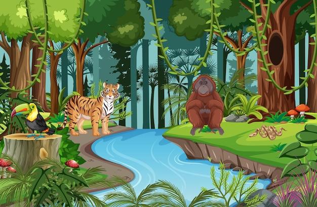 Escena de la naturaleza con un arroyo que atraviesa el bosque con animales salvajes.