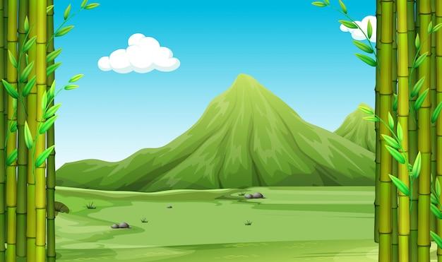 Escena de la naturaleza con bambú y colinas.