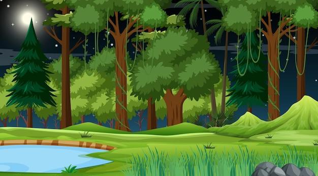 Escena de la naturaleza del bosque con estanque y muchos árboles por la noche.