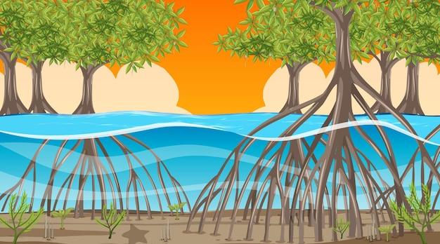 Escena de la naturaleza con bosque de manglares al atardecer en estilo de dibujos animados