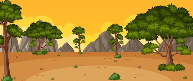 Escena de la naturaleza del horizonte o campo del paisaje con vista al bosque y vista del cielo amarillo al atardecer