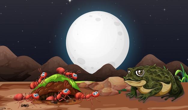 Escena de la naturaleza con hormigas y sapos en la noche