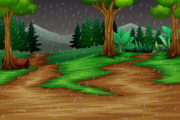 Escena de la naturaleza con la lluvia en el fondo del bosque