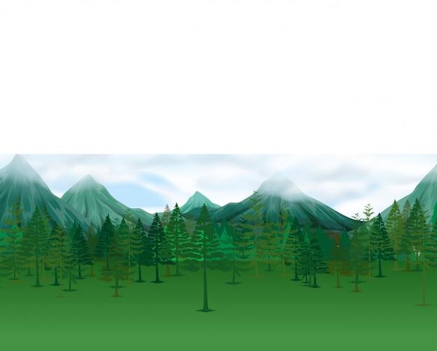 Escena de la naturaleza con pinos y montañas.