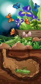 Escena de la naturaleza con saltamontes y mariposas