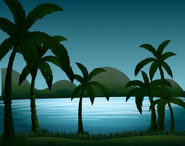Escena de la naturaleza de la silueta con el fondo de los árboles de coco