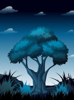 Una escena nocturna en el bosque.