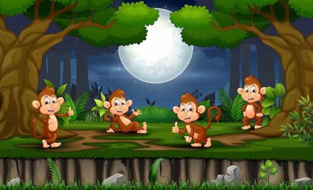 Escena nocturna con muchos monos en el bosque