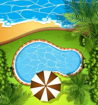Escena del océano y piscina.
