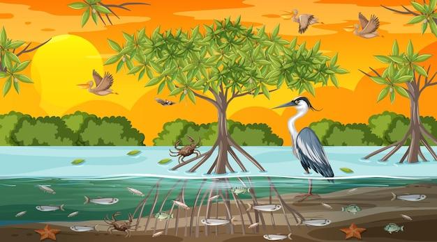 Escena del paisaje del bosque de manglares al atardecer con muchos animales diferentes
