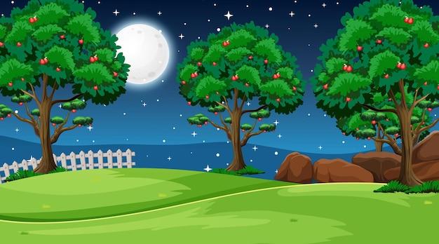 Escena del paisaje del parque natural en blanco por la noche