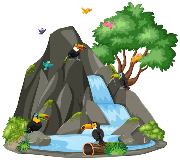 Escena de pájaros tucanes junto a la cascada