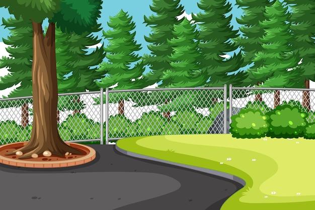 Escena del parque natural con muchos pinos grandes.