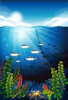 Escena con peces nadando bajo el agua