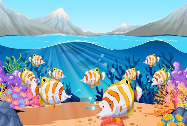 Escena con peces nadando bajo el mar