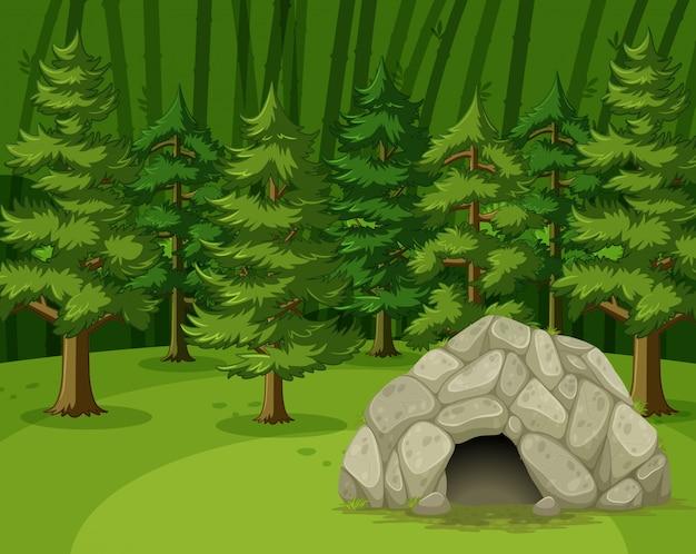 Escena con pequeña cueva en el gran bosque