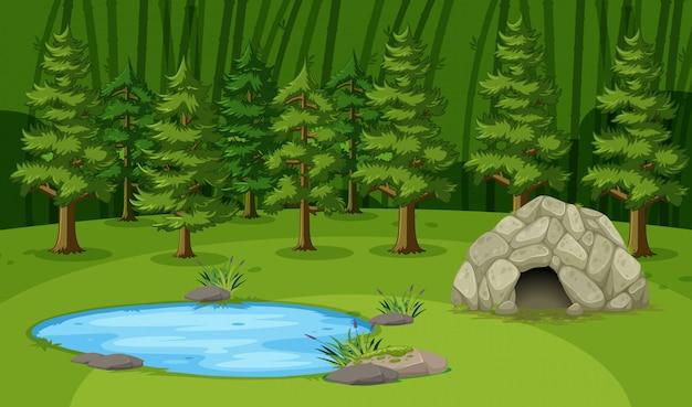 Escena con pequeña cueva junto al estanque en el gran bosque