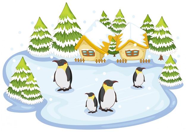 Escena con pingüinos en la nieve
