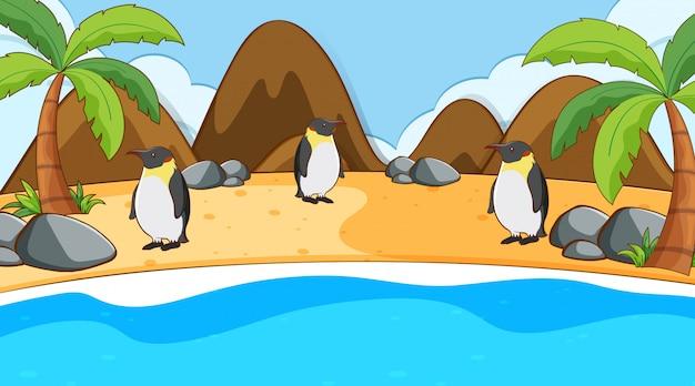 Escena con pingüinos en la playa