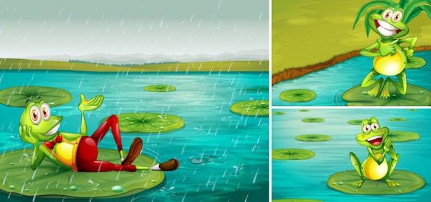 Escena con ranas en el estanque