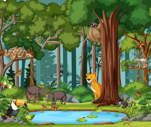 Escena de la selva tropical con animales salvajes.