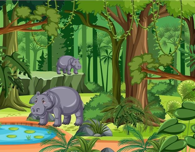 Escena de la selva tropical con familia de hipopótamos