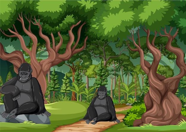 Escena de la selva tropical con varios animales salvajes.