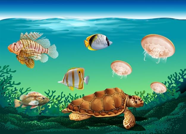 Escena submarina con muchos animales marinos.