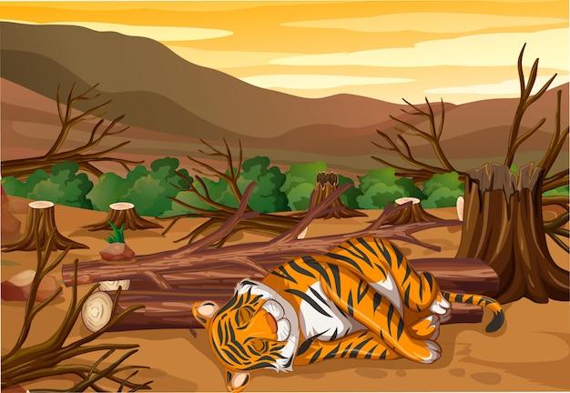 Escena con tigre y deforestación.