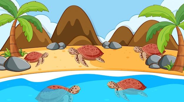 Escena con tortugas marinas nadando en el mar
