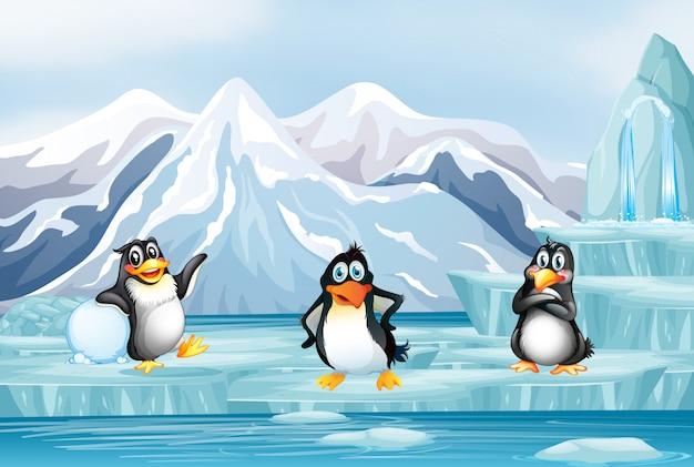 Escena con tres pingüinos en hielo