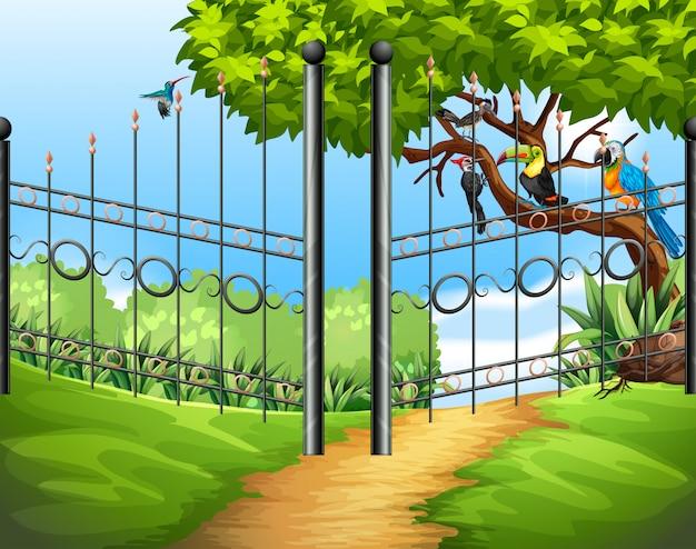Escena con valla metálica y pájaros en el árbol