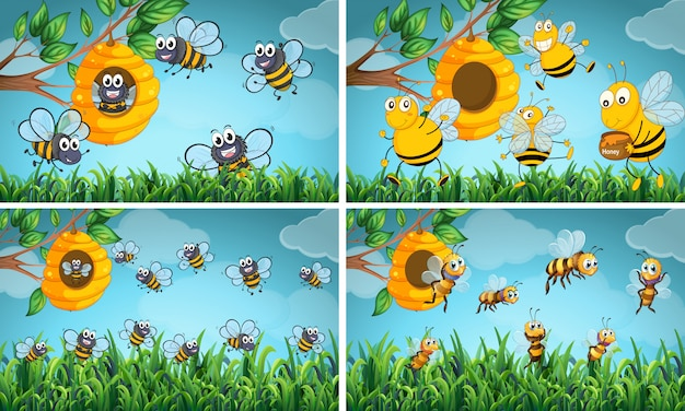 Escenas con abejas y colmenas.