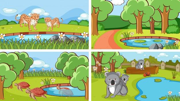 Escenas de animales en la naturaleza