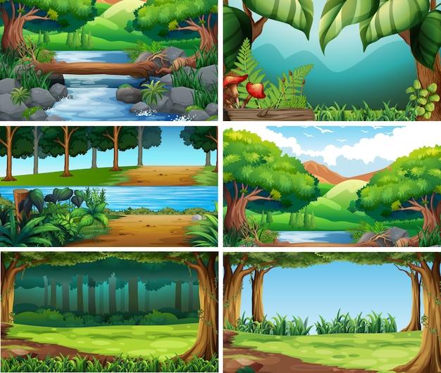 Escenas de naturaleza paisaje en blanco