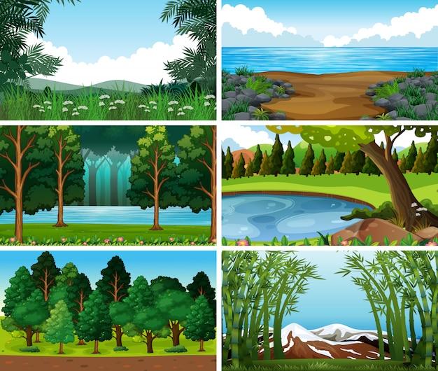 Escenas de la naturaleza del paisaje vacío, en blanco