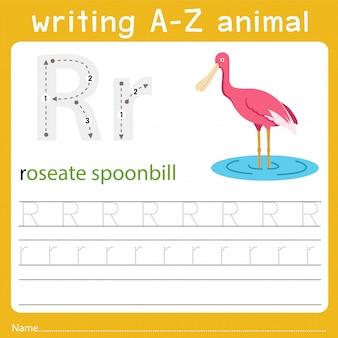 Escribiendo az animal r
