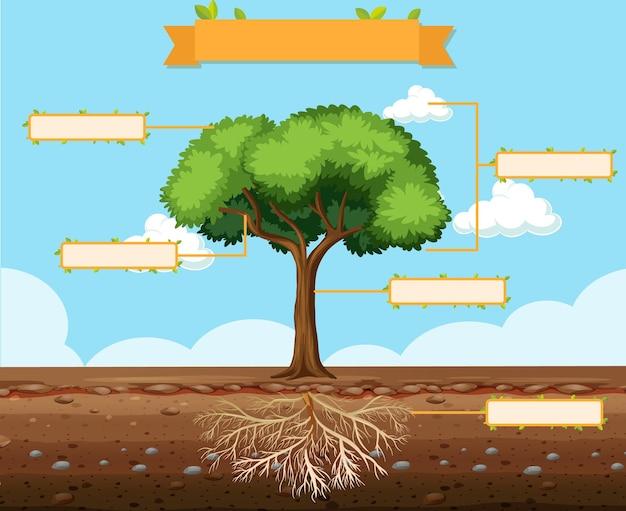 Escribir partes de una hoja de trabajo de árbol para niños