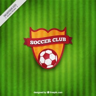 Escudo de fútbol en un fondo verde