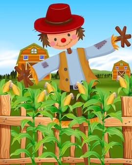Espantapájaros en el campo de maíz