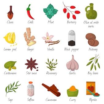 Especias, condimentos y condimentos alimentos hierbas elementos decorativos vector.