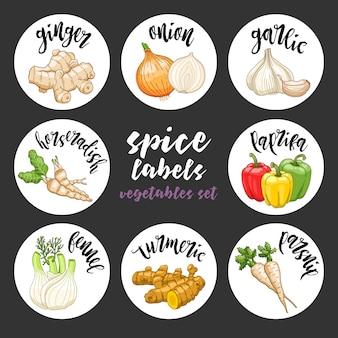 Especias hierbas etiquetas. conjunto de verduras coloreadas