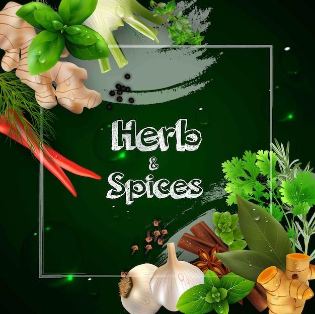 Especias y hierbas en el fondo verde